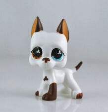 #577 Rare LPS Littlest Pet Shop White & Brown Great Dane DOG Puppy Blue Eye TOY