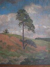 FRANZ HETZER,1928, ÖLSTUDIE, Kiefer vor Wolkenhimmel im Sommer