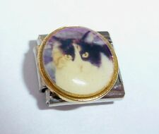 CAT Italian Charm  Black White & Ginger fits 9mm Starter Bracelets I Love My Pet