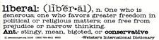 Liberal Definition - Magnetic Bumper Sticker / Decal Magnet