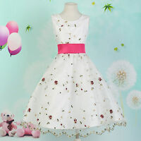 Girls Party/Bridesmaid/Princess/Prom/Wedding/Pageant Flower Girl Dress Age 7-12