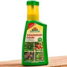 Neudorff Schachtelhalm Extrakt 250 ml Gießen Spritzen pflanzlich