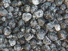 2 LB NATURAL APACHE TEARS size Small to Medium VOLCANIC GLASS 4500+ CARATS