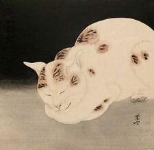 CAT, CHAT, KATZEN, SLEEPING, FROM PRINT BY KAWANABE KYOSAI, JAPANESE ART, MAGNET