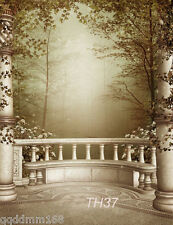 Fairy Tale vinyl photography background backdrop studio photo props 5X7FT TH37