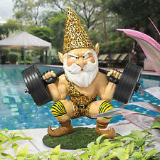 Garden Gnome Statue Statuary Lawn Yard Art Ornament Home Resin Decor Sculpture