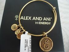 Alex and Ani Initial E Charm Bangle Bracelet  Russian Gold New W/Tag Card & Box