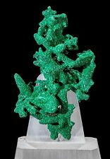 Malachite after Azurite Pseudomorph Mineral Specimen from the Congo