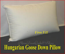 1 STANDARD SIZE PILLOW -  95% HUNGARIAN GOOSE DOWN- FIRM SUPPORT- 800 FILL POWER
