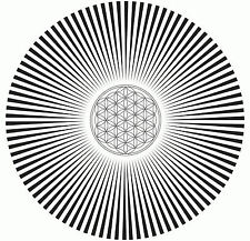 Framed Print - Black & White Spiral Hole (Poster Picture Optical Illusion Art)