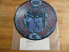 "Enforcers / Hardcore Junglism 13 /  Rare Picture Disc 12"" !!"