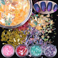 12Colors/Set Nail Art Iced Mylar Glitter Powder Acrylic UV Gel Tips Decoration
