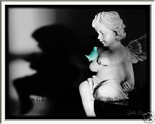"""(COLOR OPTIONS) PICTURE 8x10"""" MATTED TO 11x14"""" PHOTO PRINT ANGEL CHERUB BIRD ART"""