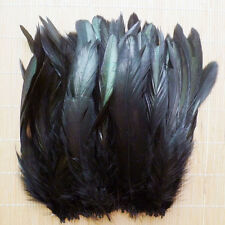 Lots 100pcs Assorted 3-5inch/8-15cm Beautiful Rooster Tail Feathers 5 Colors
