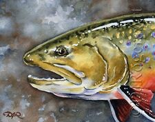 """Fly Fishing """"BROOK TROUT"""" Watercolor 11 x 14 ART Print Signed by Artist DJR"""