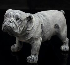 Standing English Bulldog Marble Sculpture Russian Art Animal Dog Figurine Statue