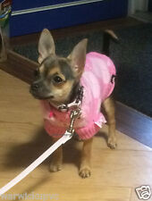Precioso Pequeño Extra 21cm longitud / 26cm circunferencia Rosa SAR la Princesa Jumper Chihuahua