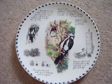 Wedgwood England porcelain china bird  plate,The Great Spotted Woodpecker