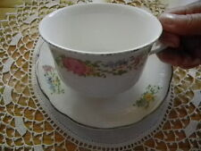 Harker Pottery Antique 1940s Jumbo Cup &Saucer Petite Point Cross Stitch Floral
