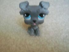 Littlest Pet Shop RARE Scottie Dog Puppy #1393 Schnauzer Grey Gray Blue Eye LPS!