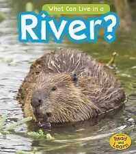 What Can Live There? Ser.: What Can Live in the River? by John-Paul Wilkins...