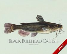 BLACK BULLHEAD CATFISH FISH PAINTING FISHING ART REAL CANVAS PRINT