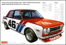 BRE Datsun 510 2.5 Trans-Am 1971-72 Champion With Race Stats - Car Poster New!