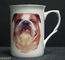 Bulldog (Head BF) Fine Bone China Mug Cup Beaker