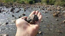 Lot of Stones from Jordan River where Jesus was baptized by John the Baptist