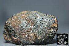 NWA 10540 HED Achondrite Monomicit Gabbroic Eucrite Meteorite 95 gram Main Mass