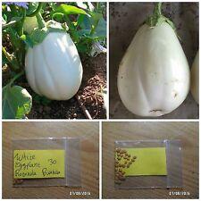 White Eggplant - Aubergine ''Rotonda Bianca'' ~30 Top Quality Seeds - Very Rare