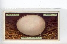 (Jc2979-100)  OGDENS,BIRDS EGGS,WOOD PIGEONS EGG,1923,#28