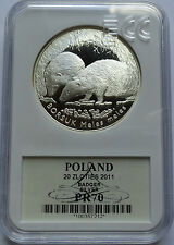 20 ZLOTYCH POLAND 2011 BORSUK BADGER MS70