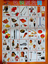 CHINESE POSTER LANGUAGE STUDY - OPPOSITE ENGLISH GUIDE YOUNG CHILDREN WALL CHART
