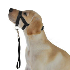 Black No Pull Dog Muzzle Head Collar Gentle Halter Lead Leader Straps for Dogs M