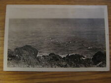 NOS VINTAGE ALASKA FUR SEAL AT PLAY REAL PHOTO POSTCARD