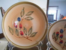 "Berries Fruit Collector Dinner(s) Plate 10 1/2"" Gibson Stoneware Brown Green Red"