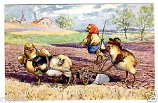 POSTCARD THIELE (UNSIGNED) CHICKS PLOWING AND SOWING T.S.N. SERIES 1351