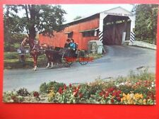 POSTCARD USA AMISH COUNTRY - A COURTING BUGGY