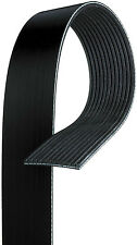 Gates K120525 Serpentine Belt