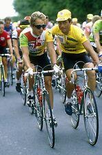 GREG LEMOND & BERNARD HINAULT TEAM LA VIE CLAIRE TOUR DE FRANCE 1985 POSTER