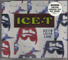 Ice T-Gotta Lotta Love cd maxi single