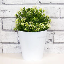 2 x 14cm bianco tondo per interni delle piante con vasi di fiori vasi copre fioriere ERBA vasche