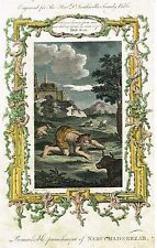"""Dr. Southwell's Bible """"PUNISHMENT OF NEBUCHADNEZZAR"""" - Hand-Col. Eng. -1775"""