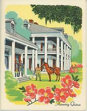 VINTAGE SOUTHERN PLANTATION FLOWERING QUINCE HORSE PRINT GRILLADES RECIPE CARD