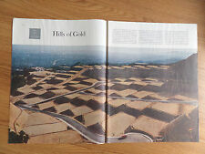 1959 Photo Article Ad Santa Monica Lots for Sale Suburbs of Los Angeles
