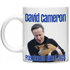 David Cameron Pig Lover Conservative Party Politics Political Mug Gift