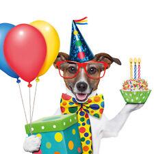 Klappkarte: ein Jack Russel - Terrier feiert Geburtstag - de luxe