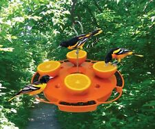 Songbird Essentials ULTIMATE ORIOLE FEEDER, SE905, Feed Nectar, Jelly & Oranges