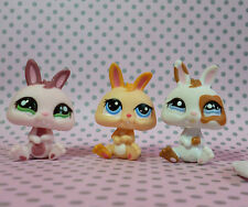 Littlest PET SHOP LPS # 1344 # 1359 # 1466 Trio di nano Bunny conigli & Accessorio